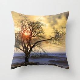 Tree in November sun Throw Pillow