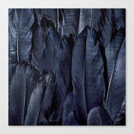 Mystic Black Feather Close Up Canvas Print