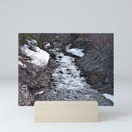 Mountain Run Off Mini Art Print