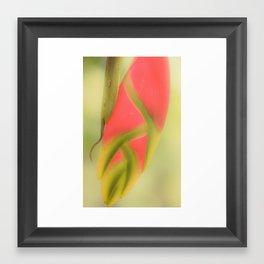 Tropical flower Framed Art Print