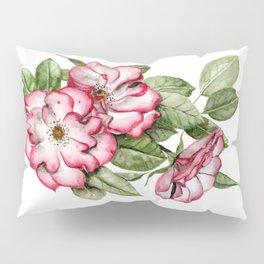 Blooming Pink Garden Roses Pillow Sham