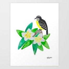 Bananaquit Art Print