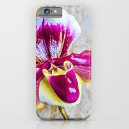 Wild Pink and Yellow Lady Slipper Flower iPhone Case