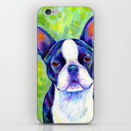 Colorful Boston Terrier Dog iPhone Skin