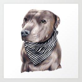 Blue Staffordshire Bull Terrier Art Print