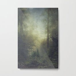 secret domaim Metal Print