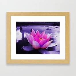 Water Lily Blues Framed Art Print