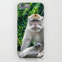 Injured Macaque iPhone Case
