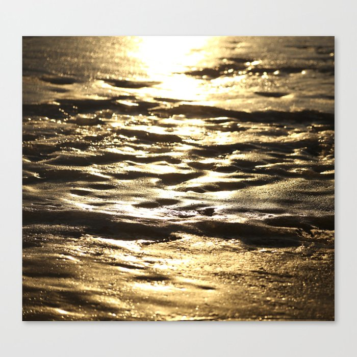 Nature In Abstract Mood  Canvas Print