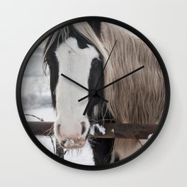 Horse by the fence Wall Clock