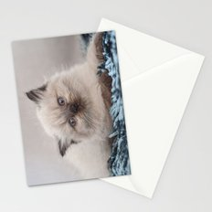Pretty Kitty Stationery Cards