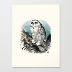Wise man Canvas Print