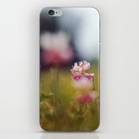 clover iPhone & iPod Skins featuring Clover by elle moss