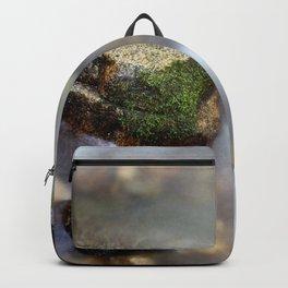 In the mood of zen iii Backpack