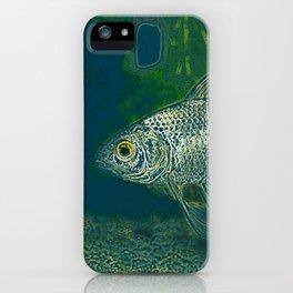 HB sea rgg iPhone Case