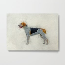 American Foxhound Metal Print