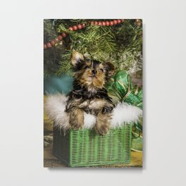 Tiny Yorkie Puppy in a Green Basket underneath a Christmas Tree Metal Print