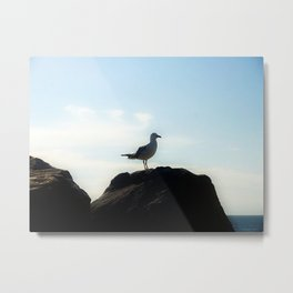Bird's eye View Metal Print