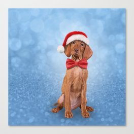 Drawing funny Vizsla pointer in red hat of Santa Claus Canvas Print