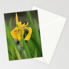 Yellow Flag Iris Stationery Cards