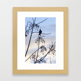 Sunrise Bird Framed Art Print