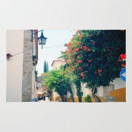 Obidos, Portugal(RR176) Analog 6x6 Kodal Ektar 100 Rug