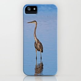 A Singular Fortune iPhone Case