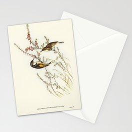 Vintage little birds Stationery Cards