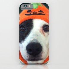 Pumpkin Dog Slim Case iPhone 6s