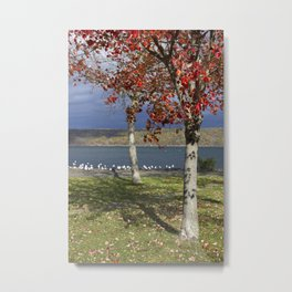 Autumn Day in the Finger Lakes I Metal Print