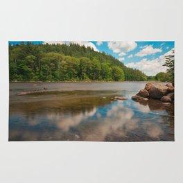 Hudson River Rug