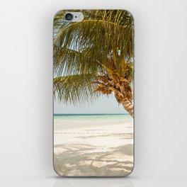 Palm Tree Paradise III iPhone Skin