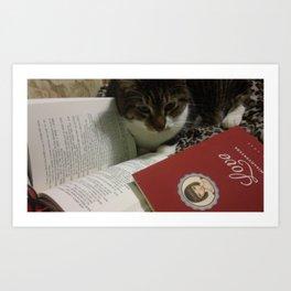 Caleb the cat Art Print