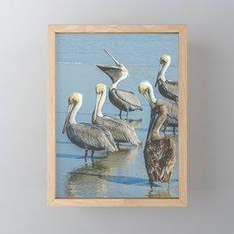Laughing Pelican Framed Mini Art Print