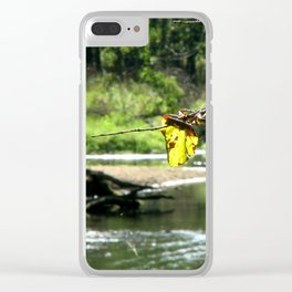 Peaceful Waters Clear iPhone Case