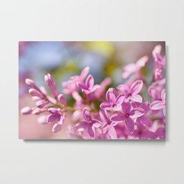 Lilac flowerets bright pink Metal Print