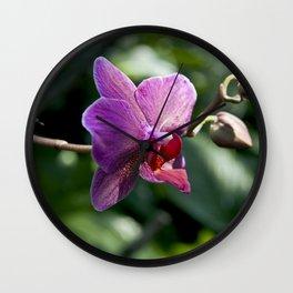 Queen of Flowers Wall Clock