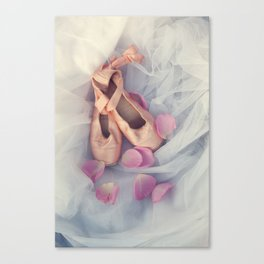 Ballet Shoes Canvas Print