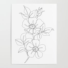 Floral one line drawing - Rose Poster
