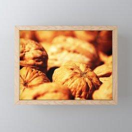Walnuts Framed Mini Art Print
