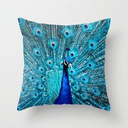 Peacock  Blue 11 Throw Pillow