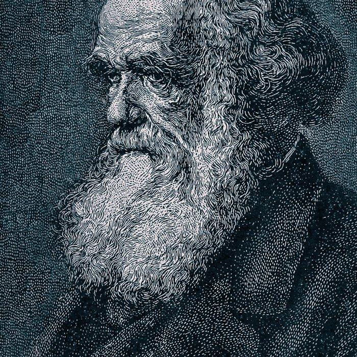 Species / Vintage portrait of Charles Darwin Leggings