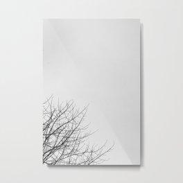 II Metal Print