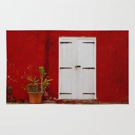 Door at the Fort Rug