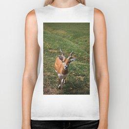 Blackbuck Antelope Biker Tank