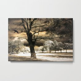 Surreal Gothic Infrared Raven Tree Landscape Nature Metal Print