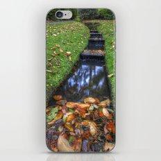 Autumn Waters iPhone & iPod Skin