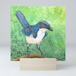 Oregon Scrub Jay Mini Art Print