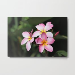 Hawaiian Flower Metal Print