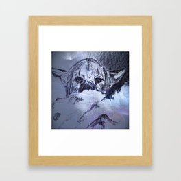 wildlife cat Framed Art Print